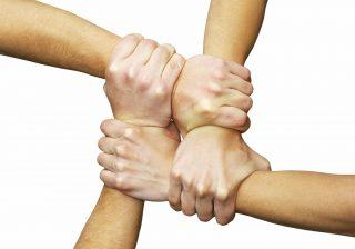 چرا سازمان ها نیاز به این ۹ اصل مدیریتی دارند؟